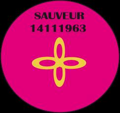 sauveur